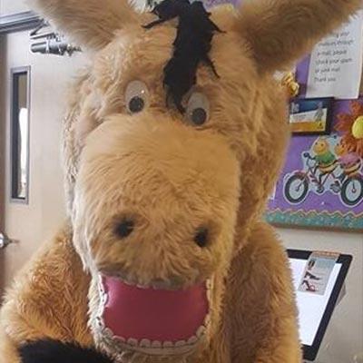 bucky bronco mascot
